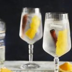 Gin and tonic with cinnamon and orange