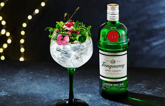 tanqueray gin bottle and glass with cocktail